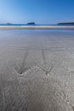 Pneu retraitant en bas de la plage Photo libre de droits