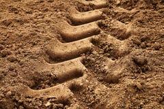 Pneumatico del trattore in terra Immagini Stock Libere da Diritti