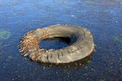 Pneumatico inutile in acqua congelata immagini stock