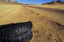 Pneus de pneus sur le No. de bord de la route Image stock