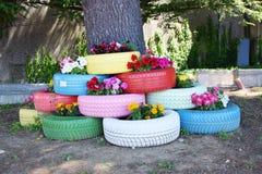 Pneus e flores coloridos Fotografia de Stock Royalty Free