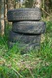 Pneus laissés dans les bois Photo libre de droits
