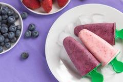 PNF caseiros do iogurte do mirtilo e da morango Fotografia de Stock