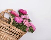 Pnk jesień kwitnie w słomianym koszu zdjęcie royalty free