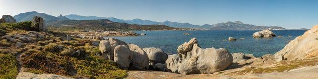 Pnoramicmening van de baai van Calvi van Punta Spanu in Corsica stock fotografie