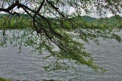 PoÄ  úvadlo - λίμνη Στοκ Εικόνα