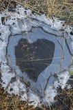 Poça do coração Imagens de Stock