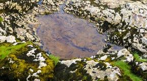 Poça na formação de rocha Foto de Stock