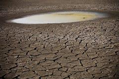Poça na terra seca Foto de Stock