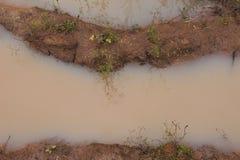 Poça suja Imagens de Stock