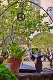 Poço de água e potenciômetros de flor antigos Foto de Stock Royalty Free