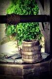 Poço e cubeta Imagens de Stock Royalty Free