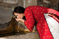 Poço tradicional búlgaro Fotos de Stock Royalty Free