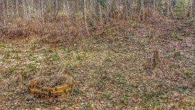 Poço velho do fogo Imagem de Stock