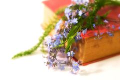 Poésie et fleurs photos stock