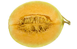 Połówka Świeży kantalupa melon odizolowywający na białym tle fotografia royalty free