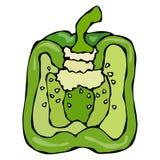 Połówka Zielona papryka, Dzwonkowy pieprz lub Słodki Bułgarski pieprz, pojedynczy białe tło Realistyczny i Doodle styl Obraz Royalty Free