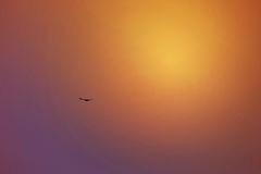Położenia słońca odbicie w niebie, Dubaj, UAE na 21 2017 Lipu Obrazy Royalty Free