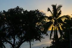 Położenia słońce tworzy tropikalną sylwetkę Zdjęcia Stock