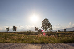 Położenia słońce w lecie Obraz Stock