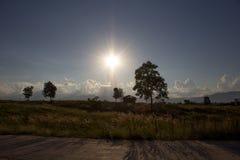 Położenia słońce w lecie Fotografia Stock