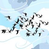 położenie ptaki Obraz Stock