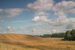 Połogi montainous pole w kraj stronie z białymi pięknymi chmurami Obraz Royalty Free