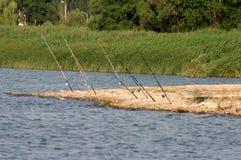 Połowów prącia w jeziorze obrazy royalty free