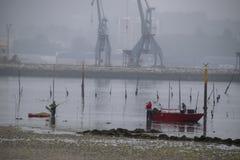 Połowów shellfish na plaży obrazy stock