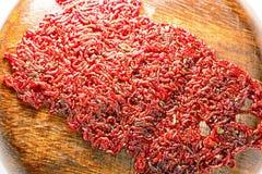 Połowu jedzenie dla akwarium ryby larwy ćma lub popas obraz royalty free