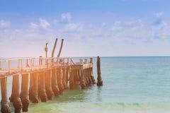 Połowu Jetty drewniany chodzący sposób nad seacoast linią horyzontu Zdjęcie Stock
