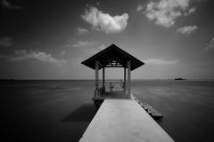 Połowu jetty w czarny i biały przy Portowym Dickson Obrazy Royalty Free