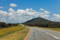 Południe - afrykańska droga przez pustyni z ocechowaniem i sawann Obraz Royalty Free
