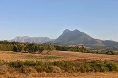 Południe - afrykańska natura Obrazy Royalty Free