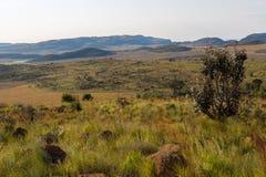 Południe - afrykańskie równiny obraz royalty free