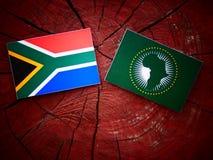 Południe - afrykanin flaga z Afrykańską Zrzeszeniową flaga na drzewnego fiszorka isola Zdjęcie Stock