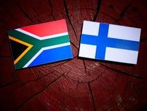 Południe - afrykanin flaga z Fińską flaga na drzewnym fiszorku odizolowywającym Obraz Stock