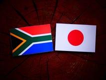 Południe - afrykanin flaga z japończyk flaga na drzewnym fiszorku odizolowywającym Fotografia Stock