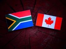 Południe - afrykanin flaga z kanadyjczyk flaga na drzewnym fiszorku odizolowywającym Fotografia Royalty Free