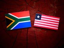 Południe - afrykanin flaga z liberyjczyk flaga na drzewnym fiszorku odizolowywającym Zdjęcie Stock