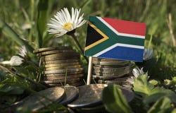 Południe - afrykanin flaga z stertą pieniądze monety z trawą fotografia stock