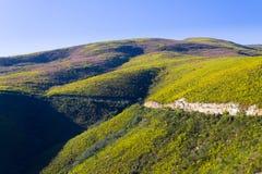 Południe - afrykanina krajobraz wzdłuż drogi Franschhoek Zdjęcia Stock