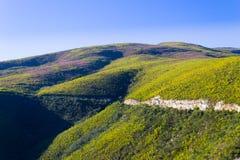 Południe - afrykanina krajobraz wzdłuż drogi Franschhoek Zdjęcia Royalty Free
