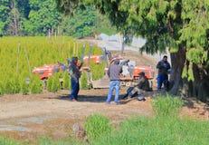 Południe - amerykańscy robotnicy rolni w Północna Ameryka zdjęcie royalty free