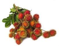 Południe - amerykańska egzotyczna owoc Fotografia Stock