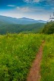 Południe granica na Appalachian śladzie z Overmountain schronieniem w odległości Zdjęcia Royalty Free