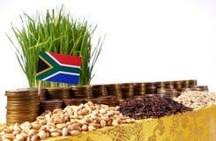 Południowa Afryka zaznacza falowanie z stertą pieniądze monety i stosami banatka Obrazy Stock