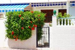 Południowa hiszpańska ulica Obraz Royalty Free
