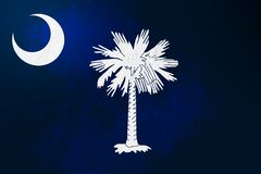 Południowa Karolina flaga tła grunge tekstura royalty ilustracja