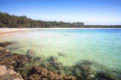 Południowa końcówka Zielona łaty plaża Australia Obraz Royalty Free